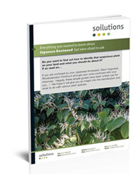 Japanese Knotweed Removal Whitepaper