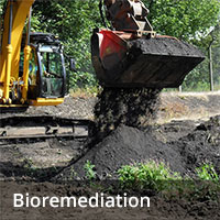 Soil remediation - bioremediation